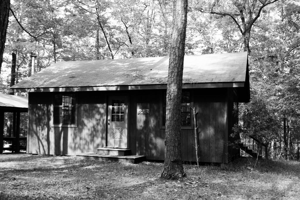Photography Cedar Crest | heartnatured
