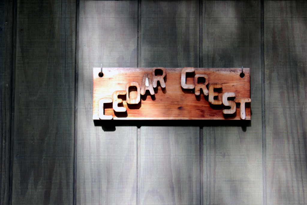 Photography Cedar Crest   heartnatured