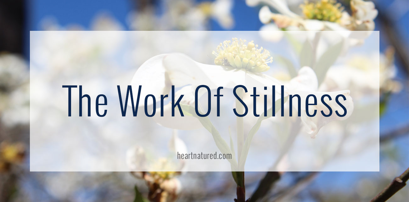 The Work Of Stillness | heartnatured