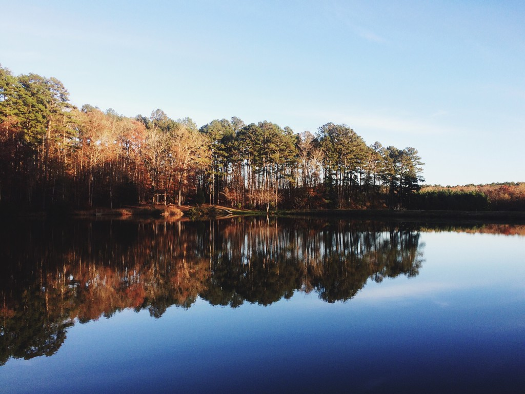 Food, Campfires, and Warm Weather