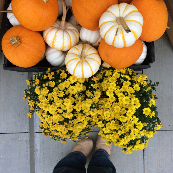 crushing on